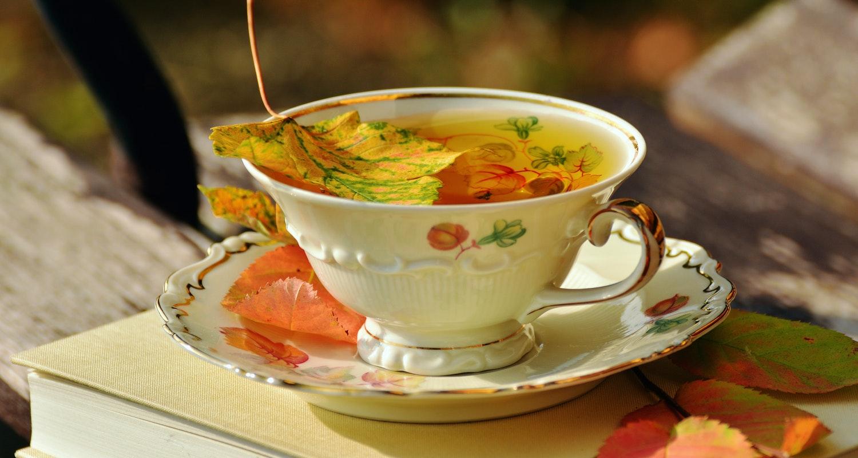 сезонное питание, осень